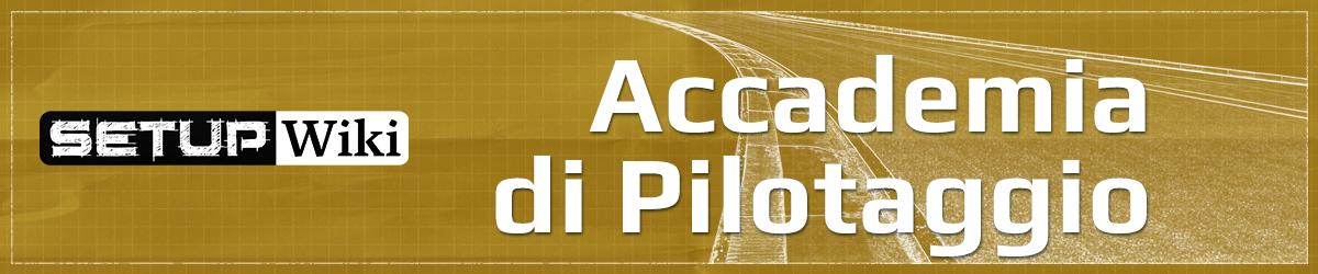 setupwiki accademia di pilotaggio simracing